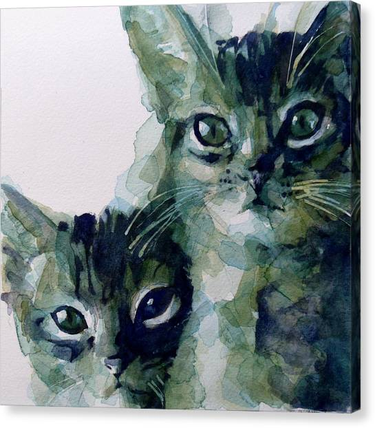 Kittens Canvas Print - Looking For A Home by Paul Lovering