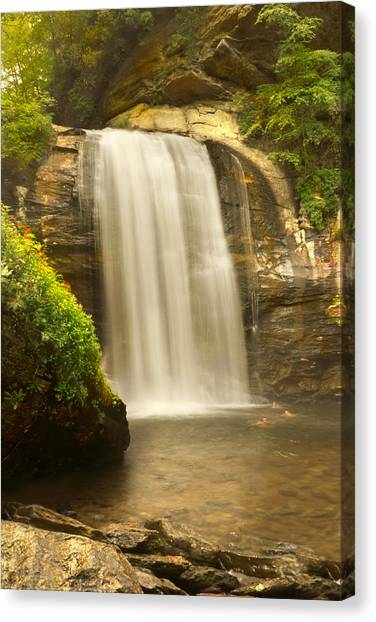 Pisgah National Forest Canvas Print - Looking Glass Falls 2 - North Carolina by Mike McGlothlen