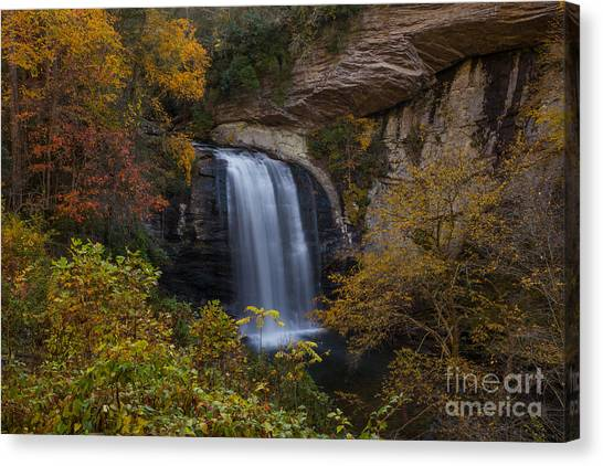 Pisgah National Forest Canvas Print - Looking Glass Falls by Bridget Calip