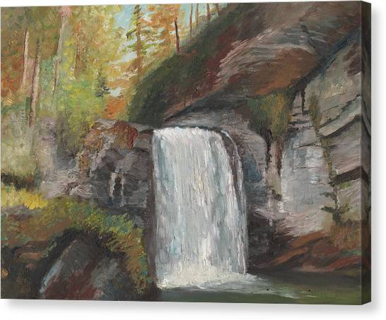 Looking Glass Falls Canvas Print by William Killen