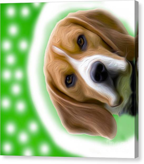 Looking Good Dog Canvas Print by Jo Collins