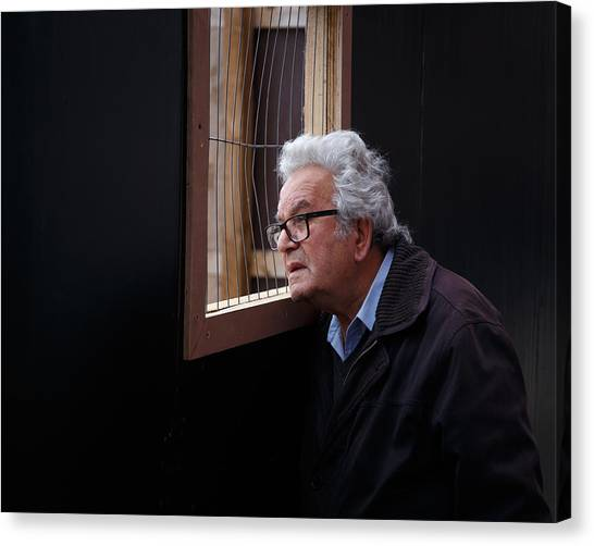 Canvas Print featuring the photograph Looking In by Paul Indigo