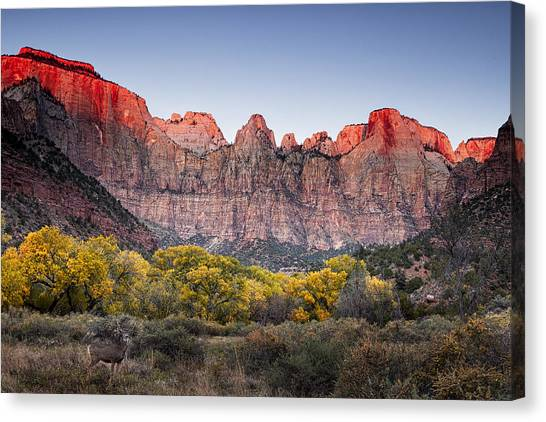 Fall Canvas Print - Looking Out From The Towers Of The Virgin by Andrew Soundarajan