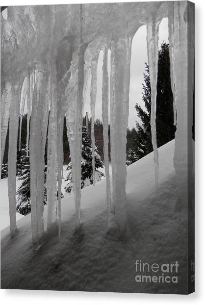 Looking Out The Window Canvas Print by Margaret McDermott