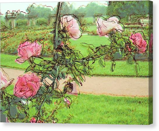 Floral Digital Art Canvas Print - Looking Through The Rose Vine by Stephanie Hollingsworth