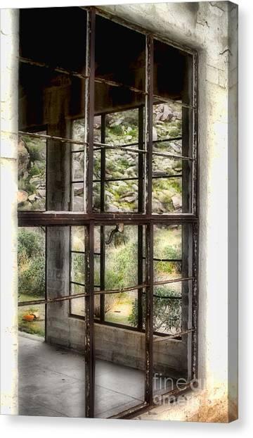 Looking Through The Window By Diana Sainz Canvas Print