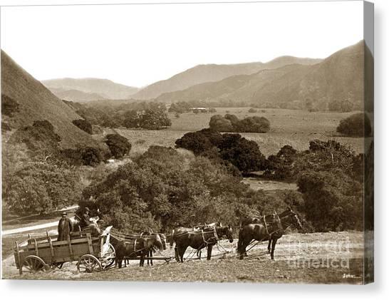 Looking Up The Carmel Valley California Circa 1880 Canvas Print