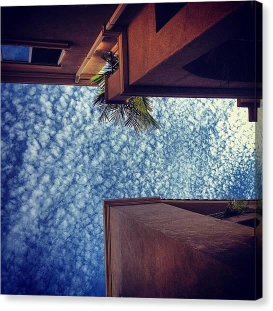 Vertigo Canvas Print - #looking #up #vertigo #bigsky by Katie Dyck