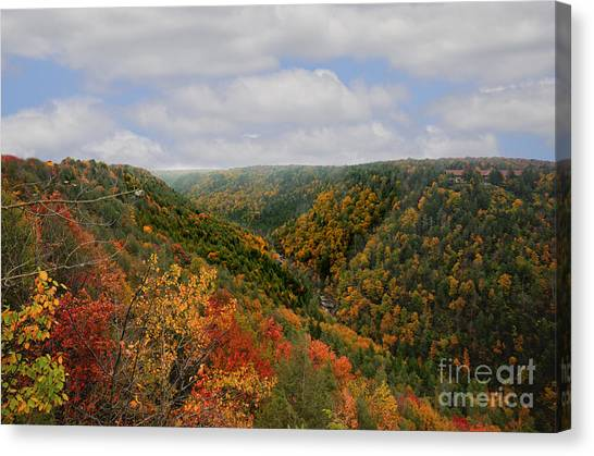 Looking Upriver At Blackwater River Gorge In Fall From Pendleton Point Canvas Print