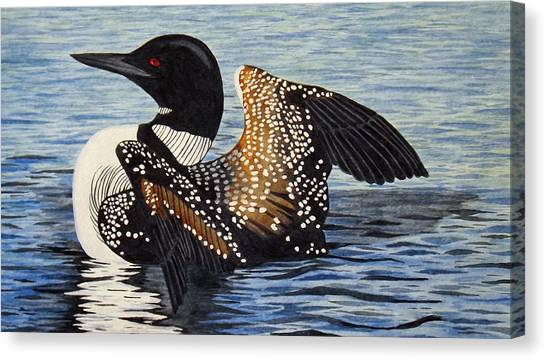 Loon In Flight Canvas Print