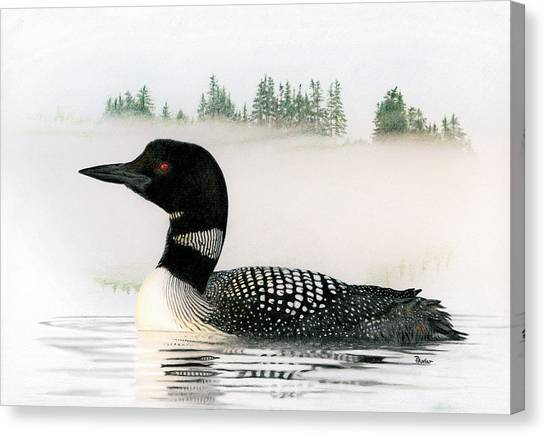 Loons Canvas Print - Loon In Fog by Brent Ander