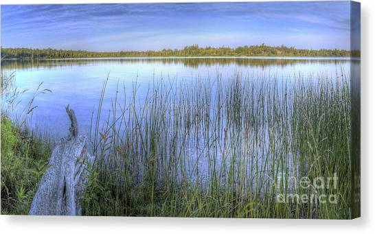 Loons Canvas Print - Loon Lake by Twenty Two North Photography