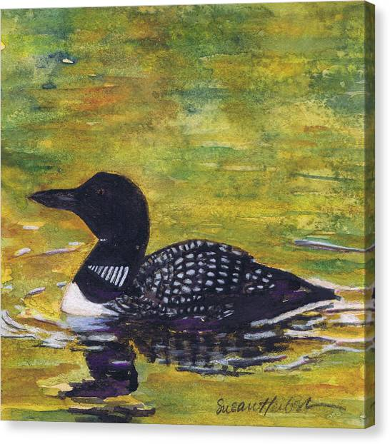 Loon On Jordon Pond Maine Canvas Print by Susan Herbst