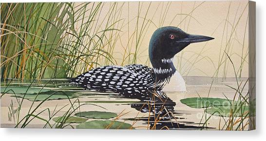 Loons Canvas Print - Loon's Tranquil Shore by James Williamson