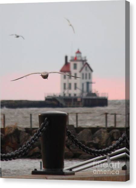 Lorain Lighthouse With Gulls Cropped Canvas Print