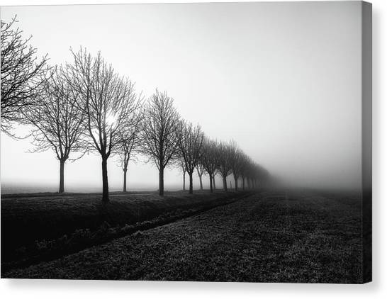 Losing Sight Canvas Print by Christophe Staelens