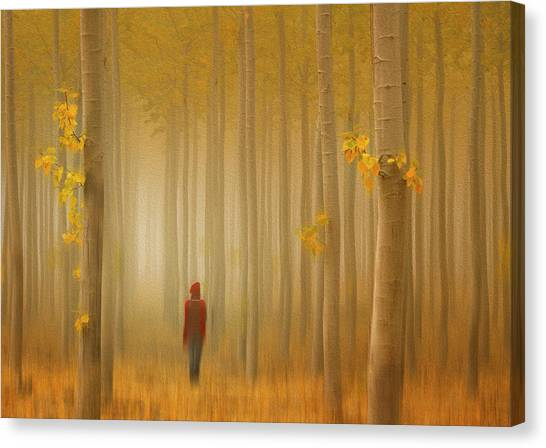 Lost In Autumn Canvas Print by Lydia Jacobs