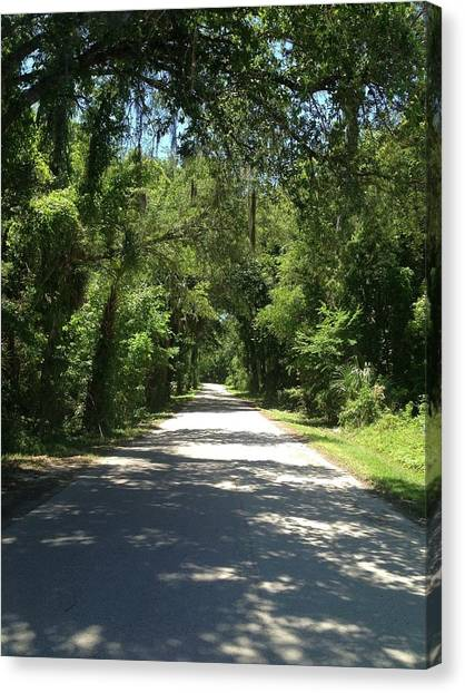 Lost In Marion County Florida Canvas Print