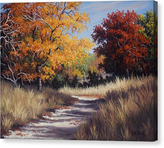 Lost Maples Trail Canvas Print