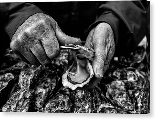 Open Canvas Print - L'ostreiculteur  Oyster Farmer by Manu Allicot