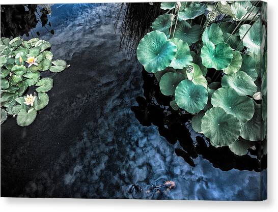 Lotus Pond Fantasia Canvas Print