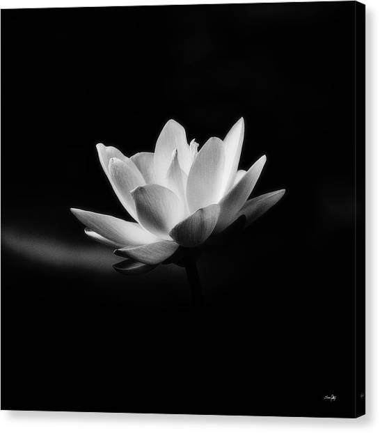 Lotus - Square Canvas Print