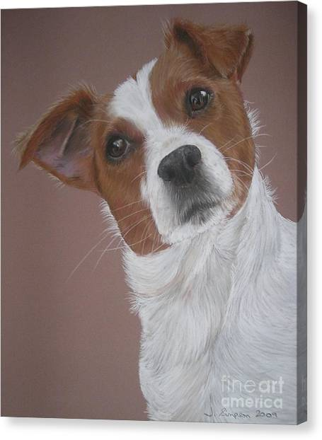 Louis Canvas Print by Joanne Simpson