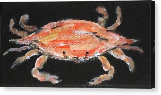 Louisiana Crab Canvas Print by Katie Spicuzza