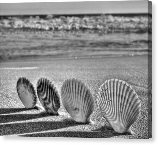 Lounging In Destin Bw Canvas Print by JC Findley