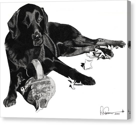 Lounging Lab Canvas Print by Rob Christensen