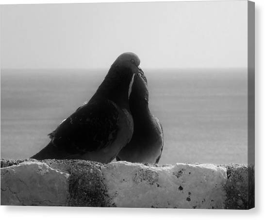 Love Birds Canvas Print by Michelle O'Neill