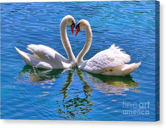 Love For Lauren On Lake Eola By Diana Sainz Canvas Print