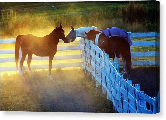 Love In Kentucky Canvas Print