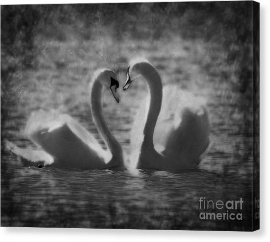 Love Is.. Canvas Print