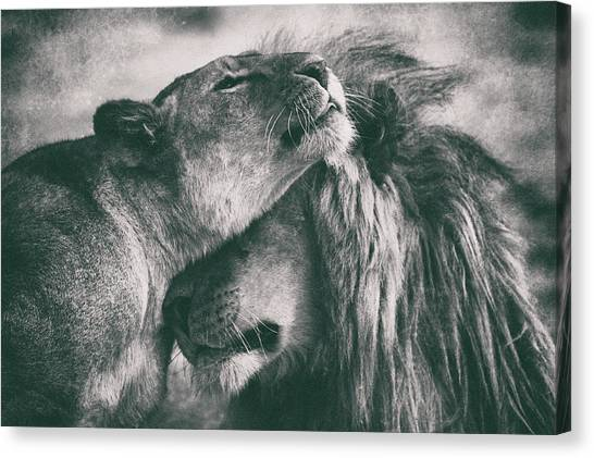Love Canvas Print by Mohammed Alnaser