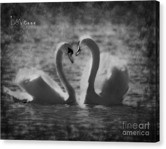 Love... Canvas Print