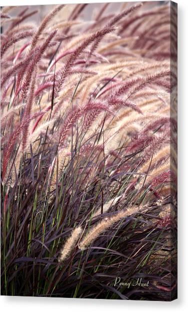 Love Purple Fountain Grass Canvas Print