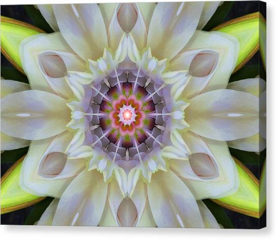 Love Star Flower Mandala Canvas Print