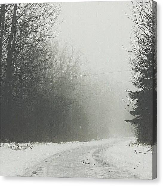 Foggy Forests Canvas Print - Love The Way Forests Look On Foggy by Noah Prodanovic-Boisvert