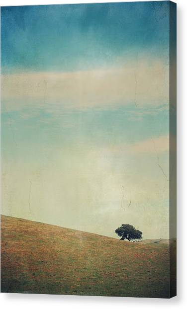 Field Canvas Print - Love Your Own Company by Laurie Search
