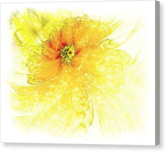 Apophysis Canvas Print - Lovely Lemon by Amanda Moore