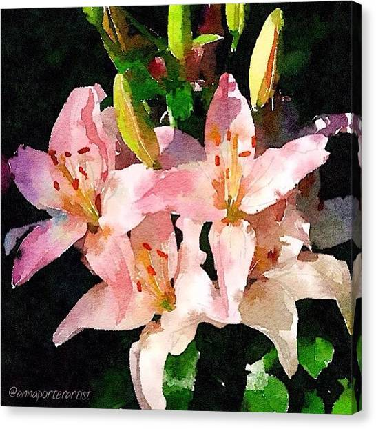 Lilies Canvas Print - Lovely Lilies Digital Painting by Anna Porter