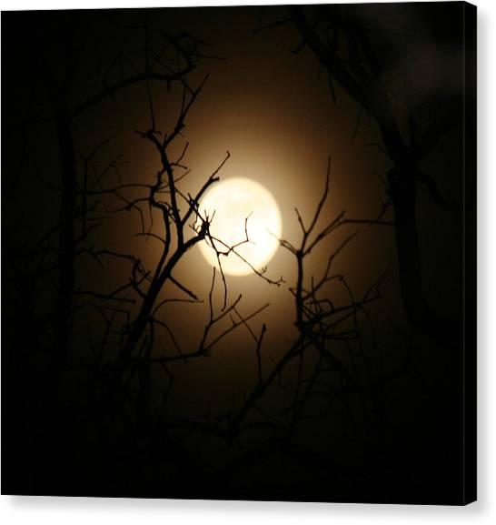 Lovers' Moon Canvas Print