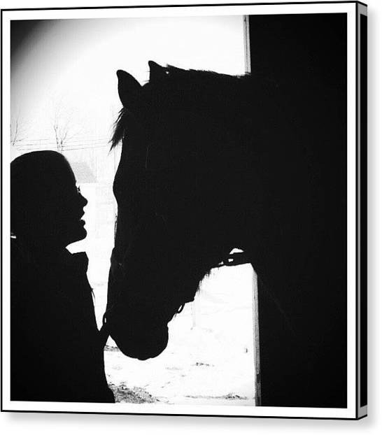 Horse Farms Canvas Print - Love's Sillouette by Sarah Watson