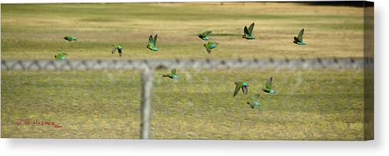 Canvas Print featuring the photograph Loving It Up At Crossed Arrows Park by R B Harper