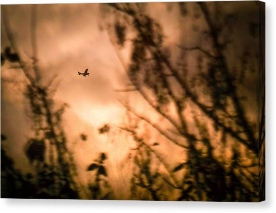 Low Angle View Of Silhouette Airplane And Trees Against Sky During Sunset Canvas Print by Andres Ruffo / EyeEm