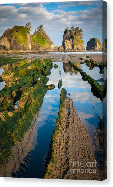 Olympic Peninsula Canvas Print - Low Tide At Point Of The Arches by Inge Johnsson