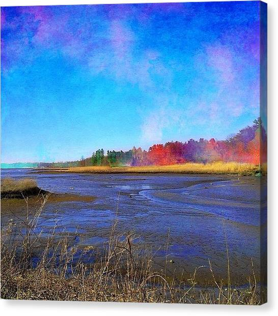 Robins Canvas Print - Low Tide In Mill Neck #picfx #procreate by Robin Mead