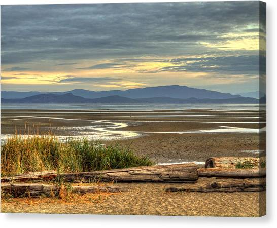 Low Tide Canvas Print