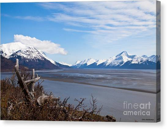 Low Tide Turnagain Arm Canvas Print by Chris Heitstuman